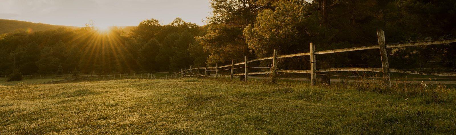 banner_paesaggio-natura